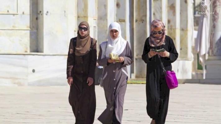 دانشگاه میشیگان کلاس دفاع شخصی ضداسلامهراسی برگزار میکند